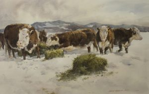 Cattle, New Mexico, Media: Watercolor on paper